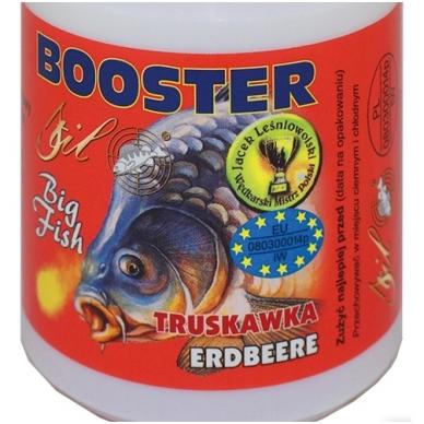 Dipas sirupas Booster Big fish 150ml Stil 6